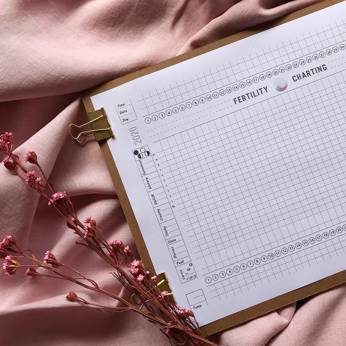 It's just a photo of Inventive Printable Fertility Chart